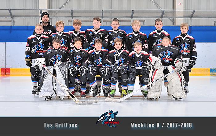 Griffons hockey